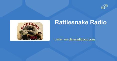 rattlesnake saloon münchen